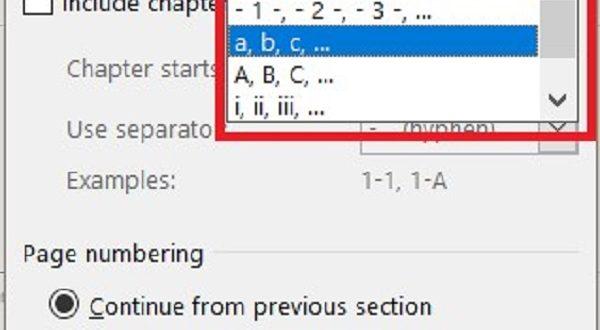 Cách đánh số trang i ii iii trong word 2010
