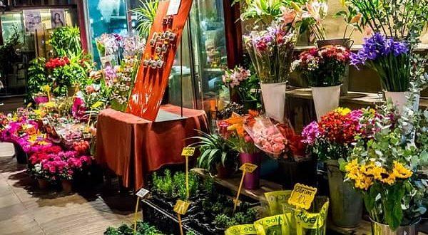 Khởi nghiệp kinh doanh hoa tươi